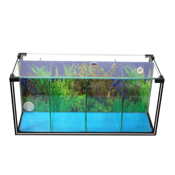 Zucht-Aquarium Betta 24 L, 4 Kammern
