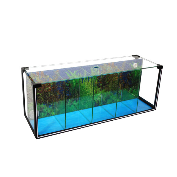 Zucht-Aquarium Betta 29 L, 5 Kammern